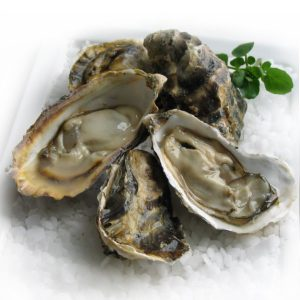 Frozen Korean 1/2 Shell Oyster